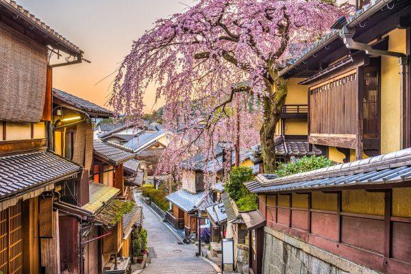 Japan---Kyoto-Street-with-Sakura---902966276