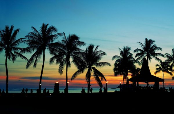 Malaysia---Silhouetted-palm-trees---845449990