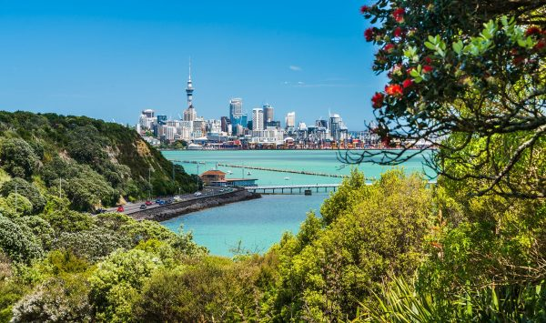 New-Zealand---View-of-Auckland-over-water---878205524